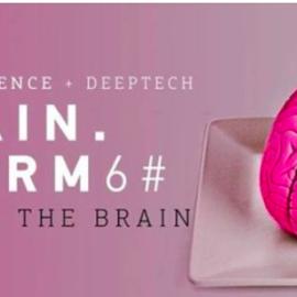 Brainstorms Food and Brain
