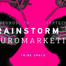 Brainstorms Neuromarketing